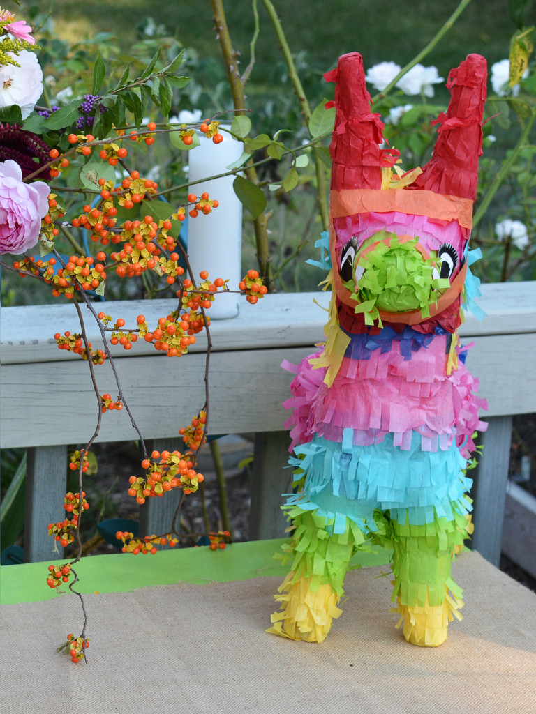 Blossom and Branch | Fiesta Birthday Party